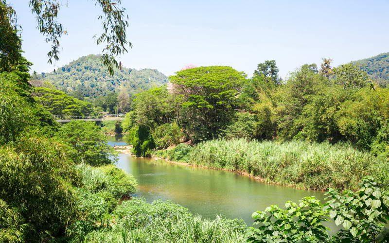 ביקור בשמורות טבע וגנים בוטניים